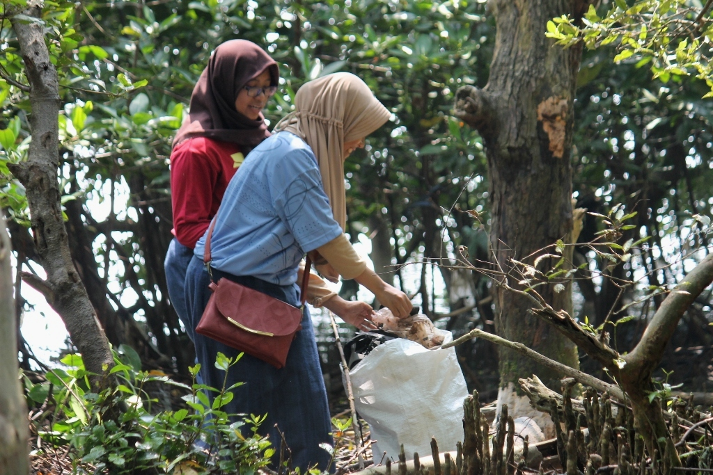 Saat Generasi Muda Peduli Sampah di Hutan Mangrove