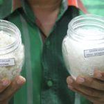 Surabaya Kosong Stok Garam, Pemkot Tunggu Kebijakan Pemerintah Pusat