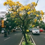 Pengharagaan Dunia Bidang Kebersihan Diterima Kota Surabaya
