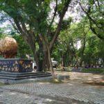 Belum Dibuka Resmi, Hutan Kota Joyoboyo Banyak Dikunjungi warga