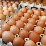 Meski Gencar Operasi Pasar, Harga Telur Ayam di Kota Kediri Tetap Naik