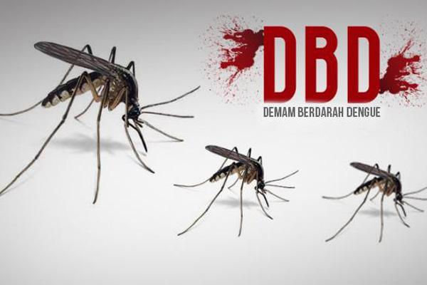 Kediri, Penderita DB Terbanyak di Jatim
