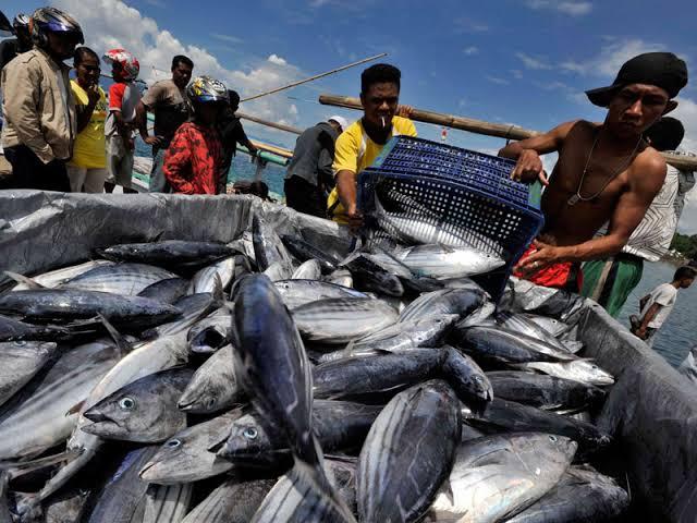 KKP Harapkan Indonesia Timur Tingkatkan Ekspor ke Jepang