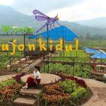 Desa Wisata Pujon Kidul Gerakkan Ekonomi Kerakyatan