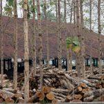 CIFOR dan IPB Perpanjang Kerjasama Kelestarian Hutan