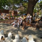 Sanggar Tari di Kediri Tampilkan Tarian Tradisional di Australia