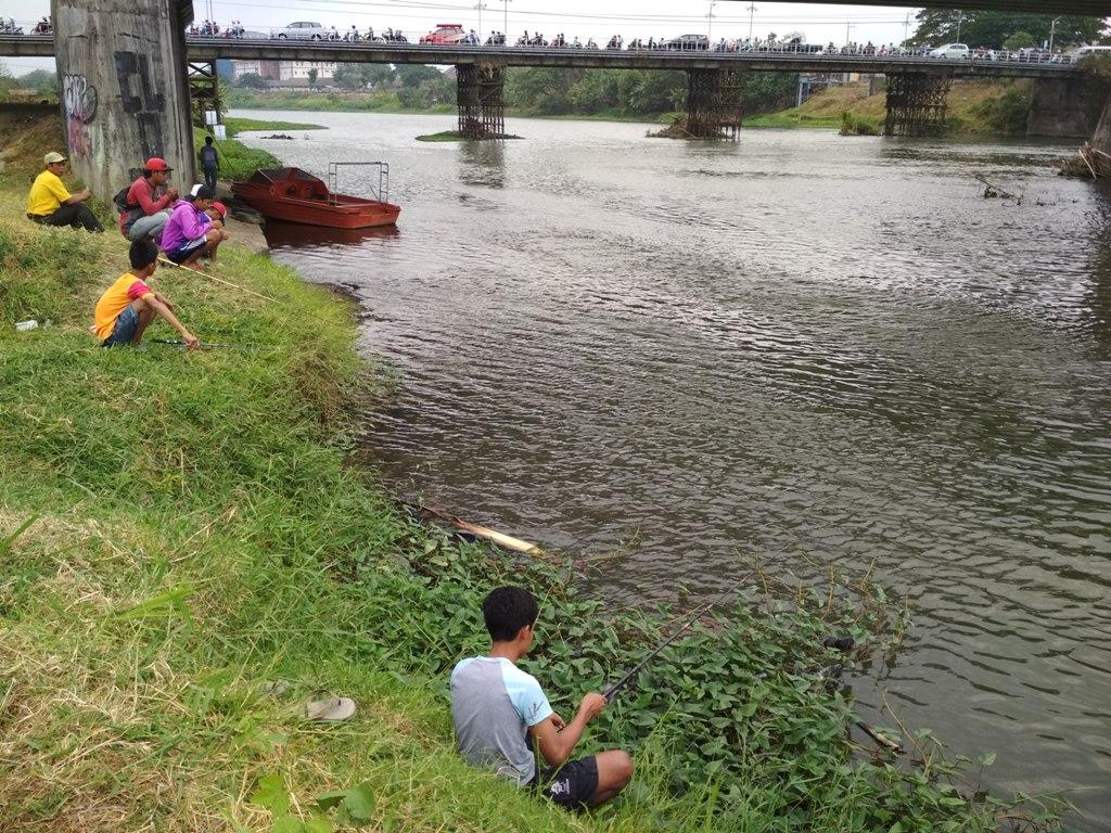 Ekosistem Sungai Brantas Terganggu, Varietas Ikan Sungai Berkurang