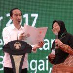 Indonesia Harus Terdepan Kelola Kelapa Sawit
