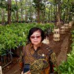 Menteri LHK Minta Petani Hutan Tanam Tanaman Seragam