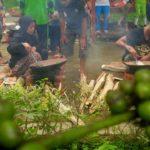 Geliat Pariwisata Banyuwangi Dongkrak Pertumbuhan Industri Kopi Rumahan