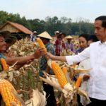 Presiden Jokowi Minta Masyarakat Jaga Persaudaraan Memasuki Tahun Politik