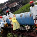 Temukan Microplastik Dalam Perut Ikan, Ecoton Ingatkan Bahaya Sampah Popok