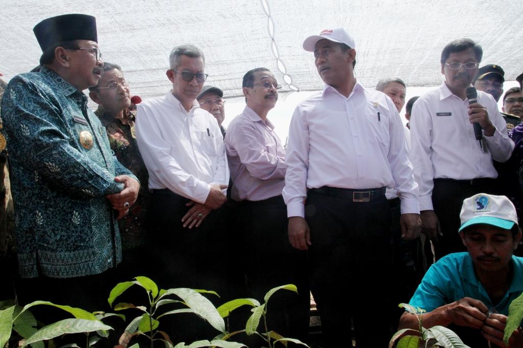 Taman Teknologi Pertanian Gresik, Upaya Pemerintah Majukan Sektor Pertanian
