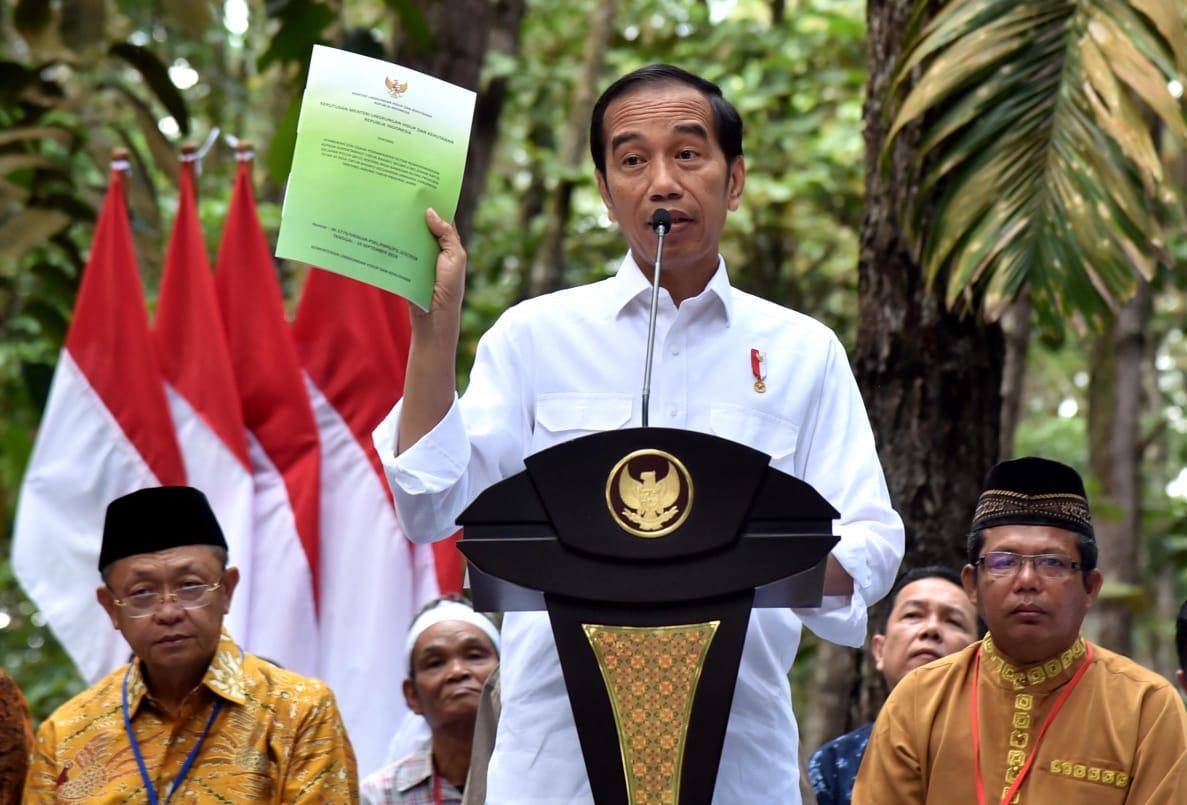 Presiden Serahkan SK Perhutanan Sosial Seluas 91 Ribu Hektare di Jambi