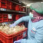 PMI Surabaya Kekurangan Stok Darah