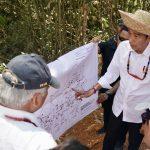 Presiden Tinjau Lokasi Alternatif Ibu Kota Negara di Kalimantan Tengah