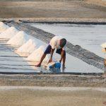 KKP Terus Kembangkan Sentra Produksi Garam