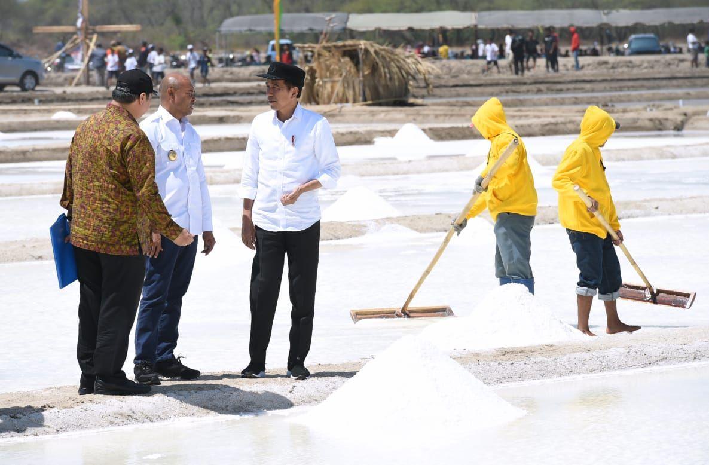Presiden Tinjau Produksi Tambak Garam di Kupang Timur