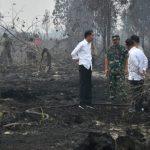 Presiden Tegaskan Pentingnya Upaya Pencegahan Karhutla