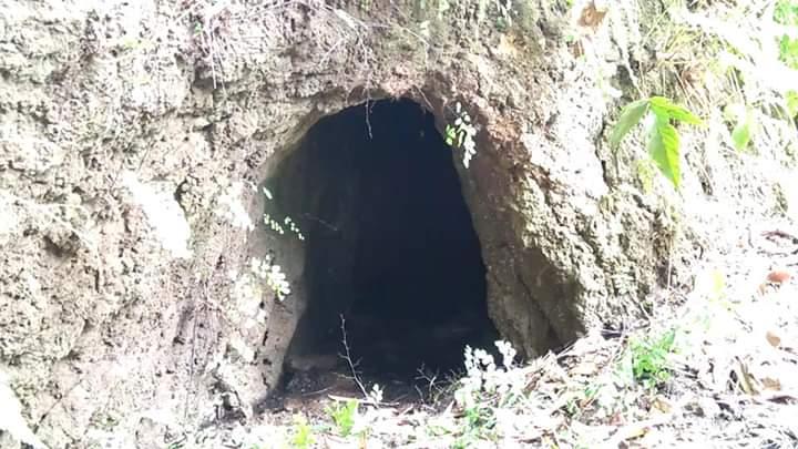 Penemuan 4 Gua dan Batu Bata Kuno di Lembah Pawon Sewu