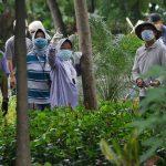 Ini Alasan Risma Tanam Pohon di Berbagai Wilayah Kota Pahlawan