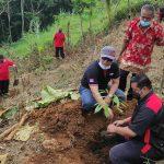 Banteng Kediri Tanam Ribuan Bibit Buah di Lereng Wilis