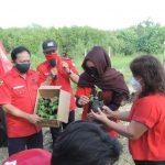 PDI Perjuangan Surabaya Hijaukan Wilayah Mangrove Wonorejo