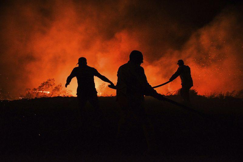 Kebakaran Hutan di Turki, Tidak Ada WNI yang Menjadi Korban