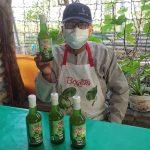 Sirup Bogem, Minuman dari Tanaman Hutan Mangrove yang Kaya Manfaat