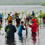 Presiden Tekankan Pentingnya Merawat dan Memelihara Hutan Mangrove