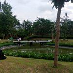 Menikmati Hutan di Tengah Hiruk Pikuk Kota Jakarta